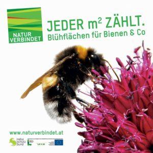 Naturschutzbund- natur verbindet Foto: tafel natur verbindet