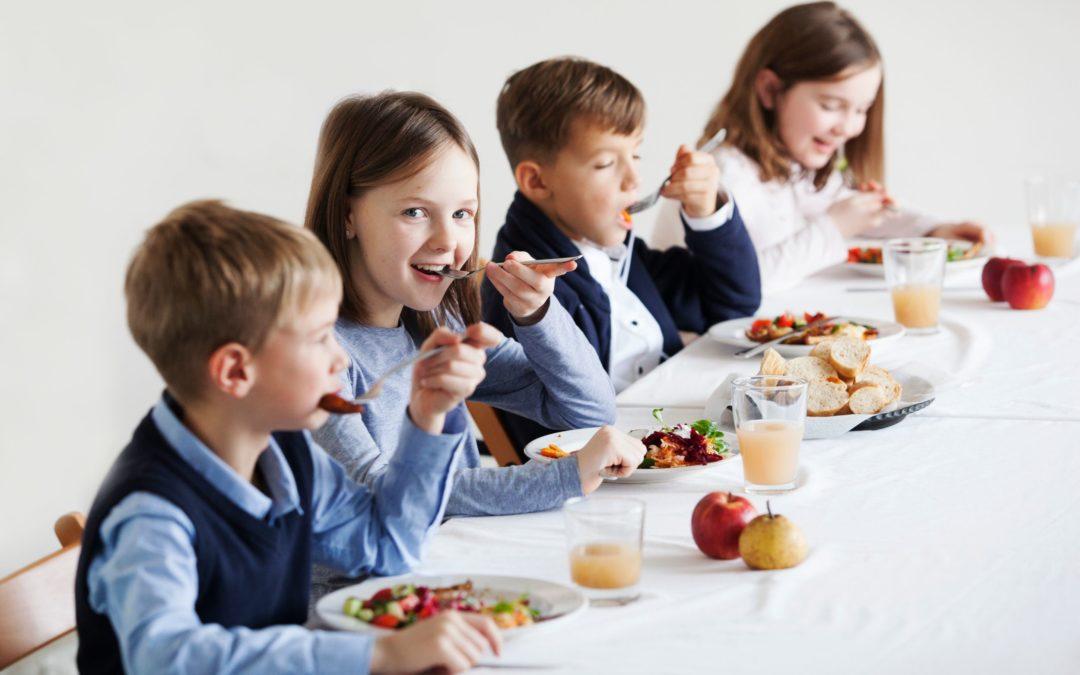 Schul- und Kindergartenessen muss besser werden