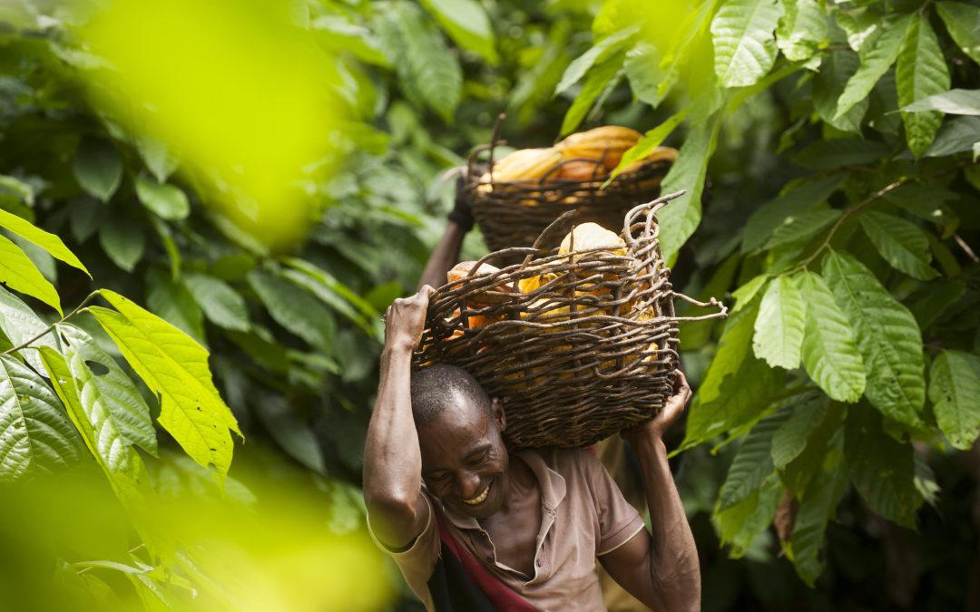 FAIRTRADE – seit 25 Jahren die dritte Säule der Nachhaltigkeit