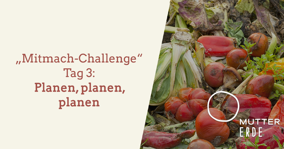 mitmach-challenge-tag-3