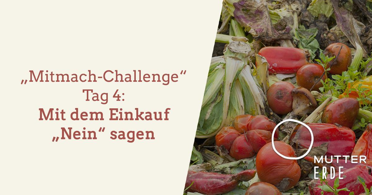 mitmach-challenge-tag-4