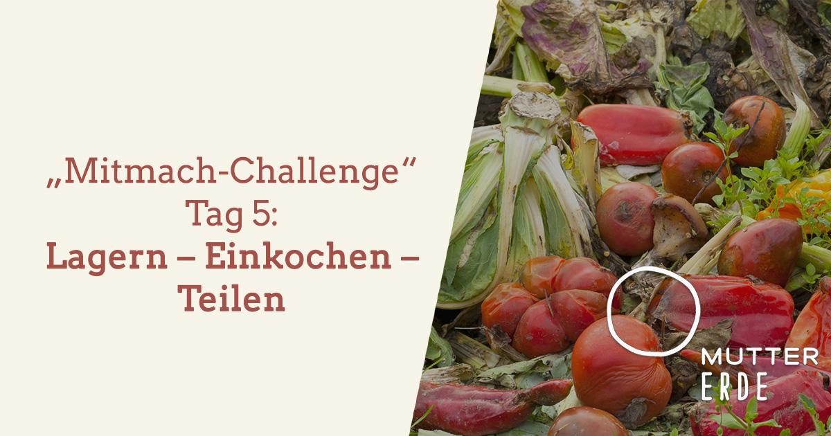 mitmach-challenge-tag-5