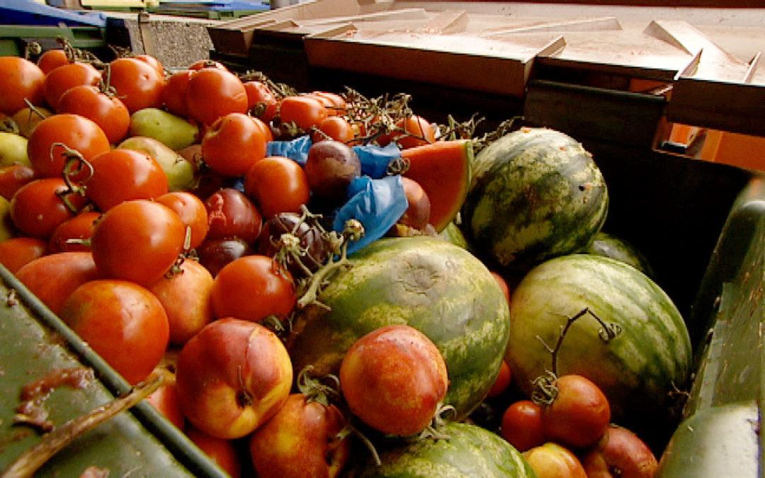 Brisante Reportage als Auftakt im ORF-Schwerpunkt zu Lebensmittelverschwendung