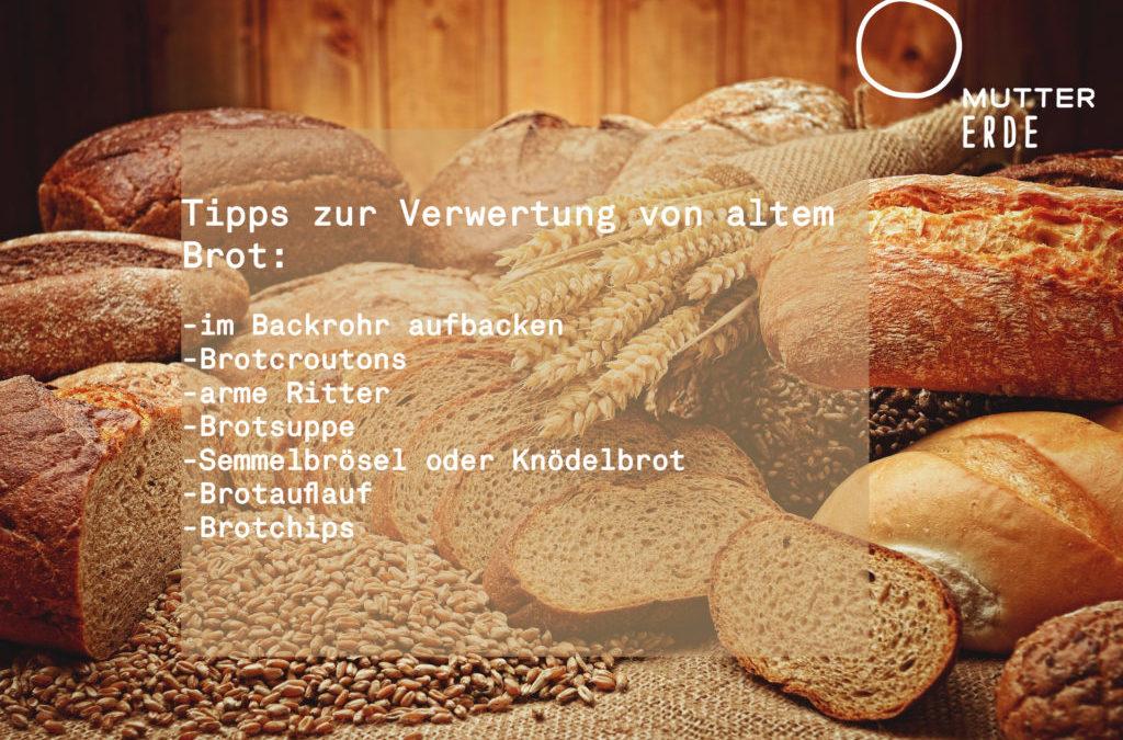 Altes Brot nutzen und Klima schützen