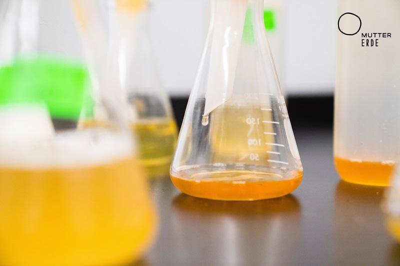 Experimente und Forscherideen für Kinder